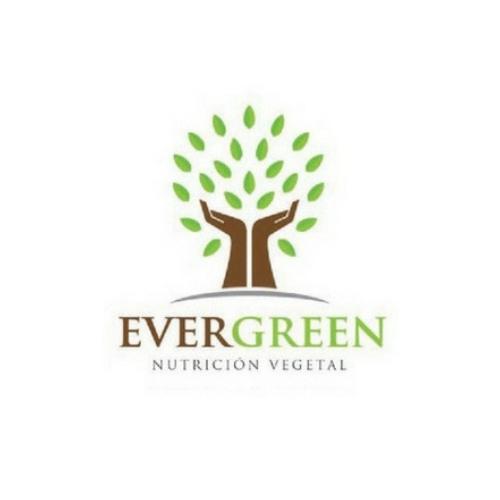 evergreen natural fertilizers